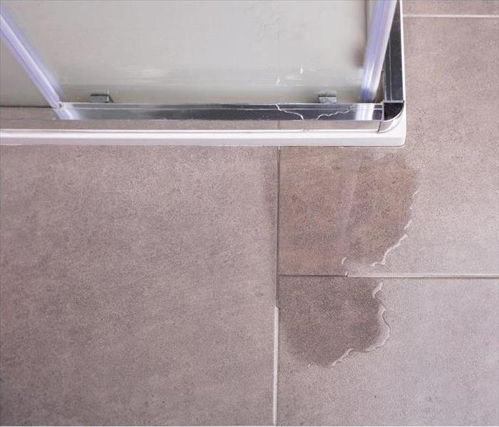 Water Damage Drip, Drip, Drip: How To Tell If Your Shower Is Leaking