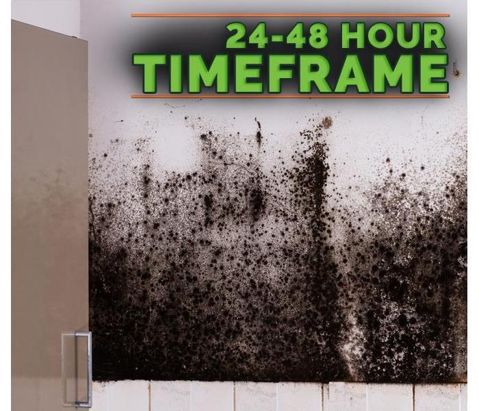 Storm Damage Prevent Mold Growth After a Flood