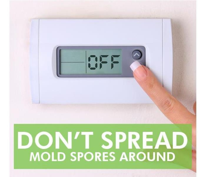 Mold Remediation How to Prevent Mold From Spreading